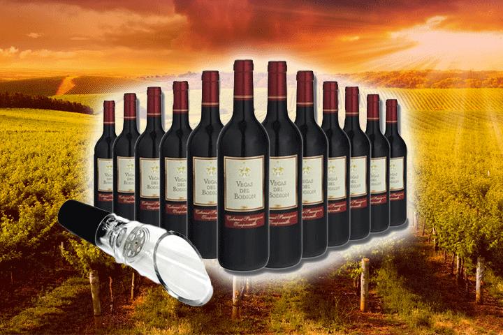 Image of   12 flasker velsmagende Vegas Del Bodión rødvin inkl. vinhælder
