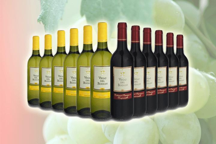 Image of   12 flasker Vegas del Bodión vin