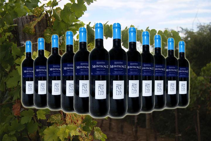 Image of   12 flasker D.O Valdepeñas Tempranillo rødvin
