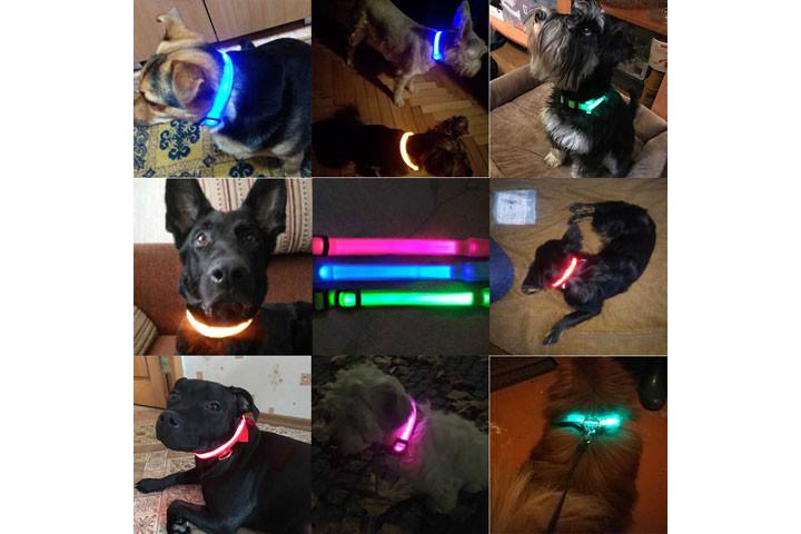 Hundehalsbåndet er genopladeligt og fås i 4 størrelser2