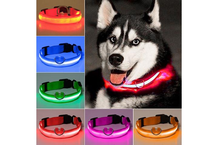 Hundehalsbåndet er genopladeligt og fås i 4 størrelser3
