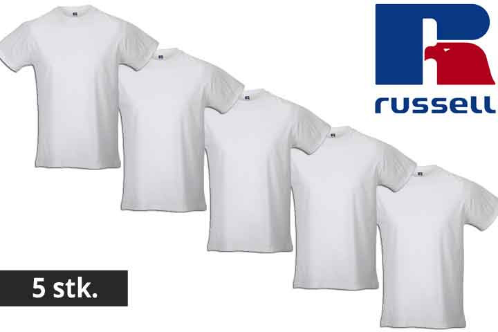 Herre t-shirts fra Russell - vælg mellem 5 eller 10 stk.5